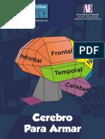 cerebro-para-armar.pdf
