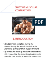 Physiology of Muscular Contraction