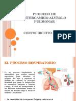 Proceso de Intercambio Alveolo Pulmonar