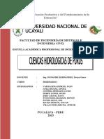 Monografia Purus