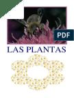 las-plantas1.pdf