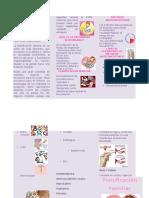 123621898-Triptico-de-Planificacion-Familiar.docx