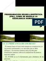 PRESENTACION_PNL_2009_2[1].pptx