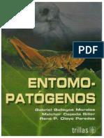 Libro de Hongos(1)