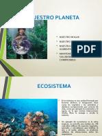 ECOLOGÍA P3