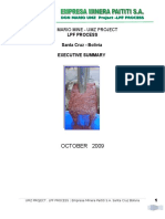 Executive Summary LPF Process.doc