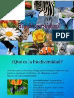 Bio Diversidad