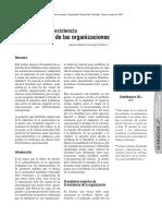 El Problema de La Existencia y La Identidad de Las Organizaciones