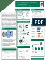 undergraduate research poster final