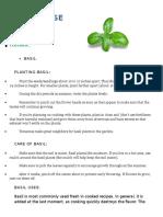 plant herb info