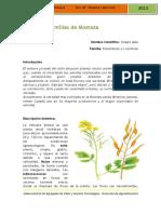 Mostaza_2013_09Sep.pdf