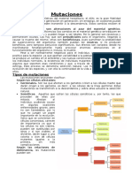 26775270-Mutaciones-Alteraciones-de-la-informacion-genetica.doc