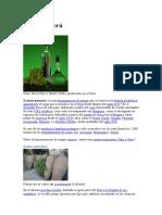 Proceso de Producción Del Pisco Peruano