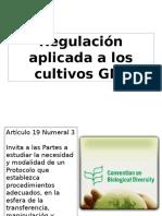 Regulación de Cultivos GM III