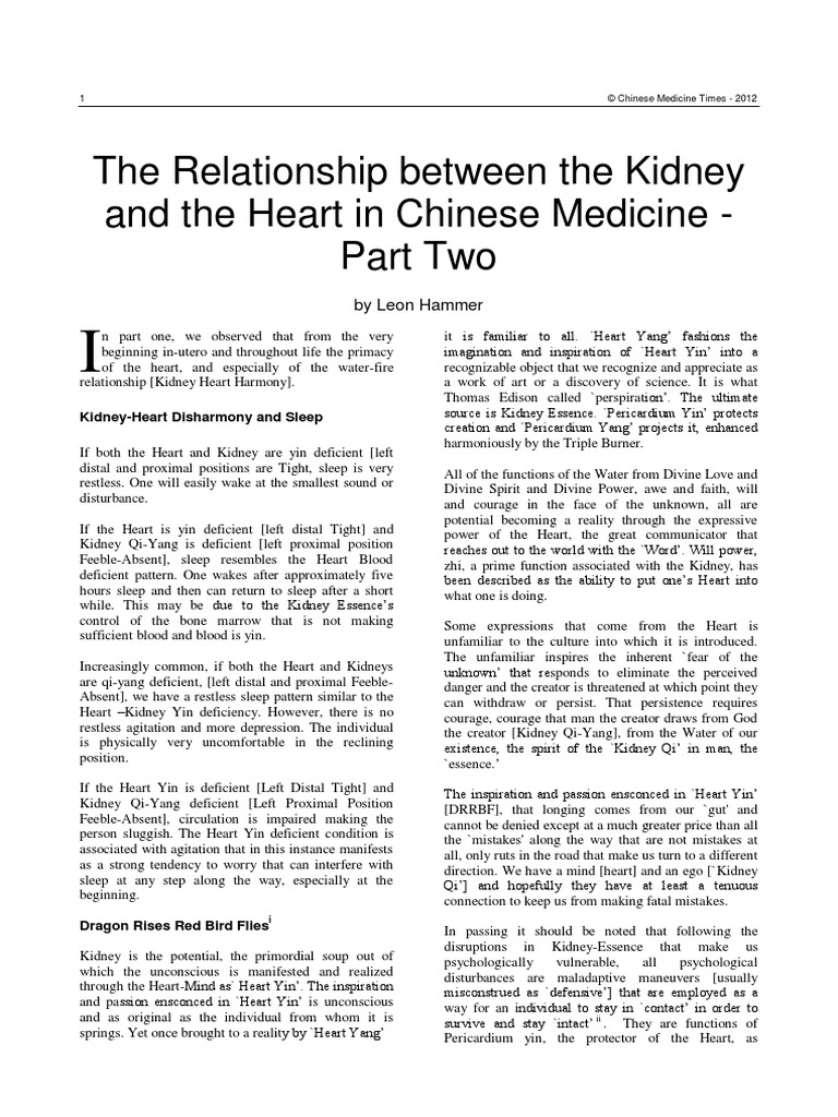 By Photo Congress || Kidney Yin Deficiency Tcm