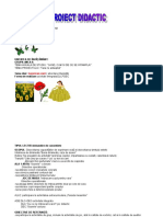 proiect_didacticsurprizele_verii