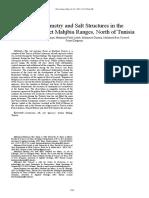 Basin Geometry and Salt Structures in the Knana Ragoubet Mah