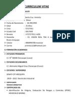 CV Olmer Santa Cruz Arminta