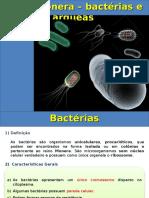 bactérias (2).ppt