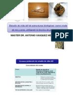Carnes y Aves Polimerizadas dr Vasquez
