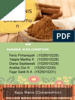 PPT Cinnamomum