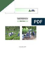 CADENA DISTRIBUCION MAIZ Y FRIJOL.pdf