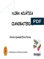 08-Cianobacterias-Elvira_Peron_Antonio_Quesada_tcm7-174294 (1).pdf