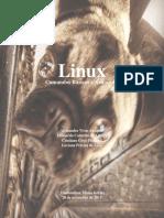 Linux comandos básicos e avançados.pdf