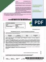 17066542016.pdf