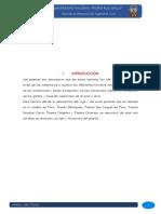 Informe de Campo - Puentes de Puira