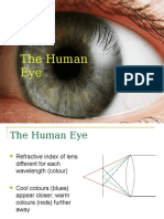 CSEC BIOLOGY Nervous Coordination -Eye