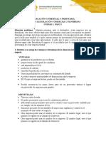 Actividad_Individual_.docx