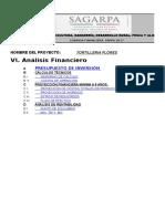 Anexo B. Análisis Financiero_FAPPA2017_FLORES