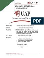 Pretension Ejecutiva - d.p.civil II