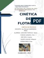 CINETICA-DE-FLOTACION.docx