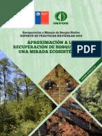 2014_INFOR_Aproximacion a La Recuperacion de Bosques Bajo Una Mirada Ecosistemica