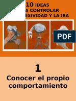 10ideasparacontrolarlaira-131209101625-phpapp01.ppt