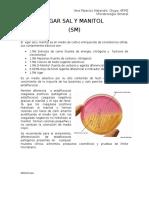 AGAR SAL Y MANITOL.docx