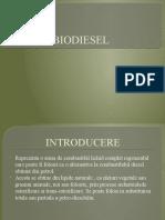 337517114-Biodiesel.pptx