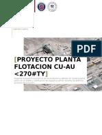 Proyecto Planta Cu AuFino 5