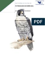Configuracion de DNS en Debian