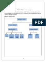 Estructura Definitiva Del Plan de Procesos