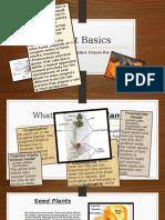 Plant Basics.pptx