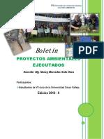 proyectosambientalesejecutados20122-130814120717-phpapp02