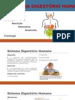 Sistema Digestorio Humano