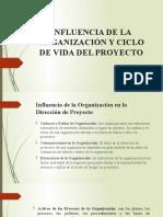 Influencia de La Organización y Ciclo de Vida