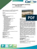 Operaciones-de-Levantamiento-Artificial-por-Gas-Lift.pdf