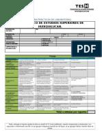 2015 Formato Rubrica v de Gowin Para Practicas de Laboratorio