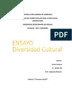 ENSAYO Diversidad Cultural