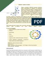 223521113-Metoda-Acvariului-Fishbowl.doc